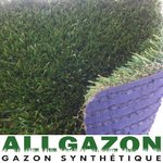 Gazon synthétique Green Naturel 50mm