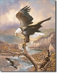 American Advertising Tin Sign - Vintage Wall Decor - Bald Eagle